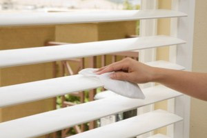 St. Petersburg Window/Blind Cleaning
